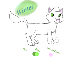 Winter chracter sheet by crisisastar15