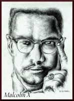 Malcolm X by Real-Nela