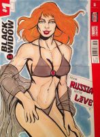 Black Widow.....Swimsuit Special! by seanpatrick76