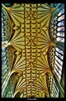 St Mary Roof 2 by bhoy
