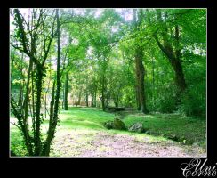 Green Forest by Unicorne
