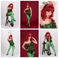 2012 Poison Ivy by Ara-Grey