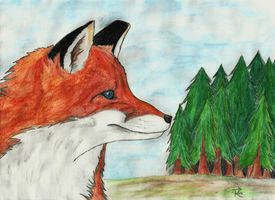 Red Fox by RunicDawn
