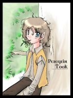 LotR - Peregrin Took by prongsie