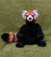 Red is for Red Panda by Zielle