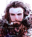 Thorin Oakenshield by aphin123
