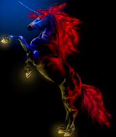Deep Horse - reworked by alexandrabirchmore