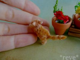 Miniature Ginger Kitten * Handmade Sculpture * by ReveMiniatures