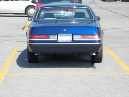 1986 T-Bird - Blue - I by Walking-Tall