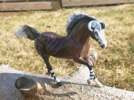 Custom Breyer Solven by kkrex