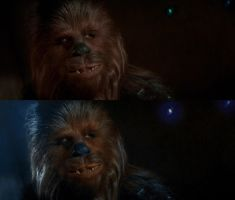 Chewie, The co pilot. by AggeIw