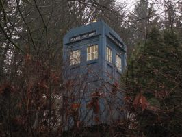 My Neighbor Built A Life Sized Tardis by TheNashNetwork