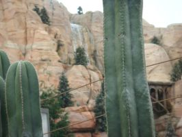 There's a waterfall of Tailfin Pass at Cars Land by Magic-Kristina-KW