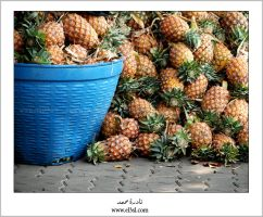 pineapple TRADITION by el3sl