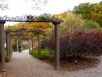 Fall pathway by Abuttonpress2Nothing