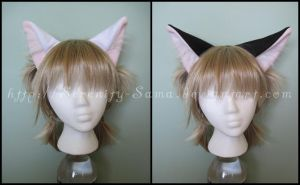 Ears: Plain Kitty by Serenity-Sama