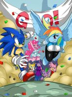 Sonic vs Rainbowdash 2 by ToonPrincessZelda43