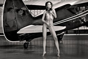Stinson Reliant by abclic