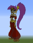 Shantae (Pause Screen -Fighter's Gear) by UKD-DAWG