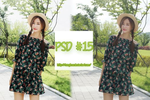 PSD #15 by hongtruc