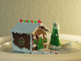 minis: gingerbread house 2008 by afterthestars