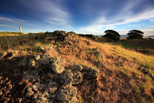 Otuataua Stonefields by chrisgin