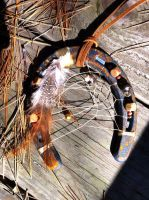 Coyote Claw Horseshoe Dreamcatcher by KonKataCreations