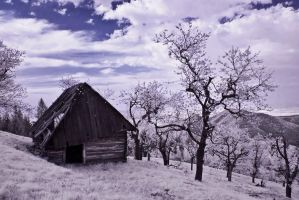 infrared landscapes 4 by xtzc