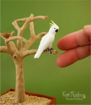Miniature 1:12 Cockatoo sculpture by Pajutee