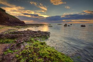 Setting over Seaweed I by fazz1977