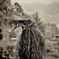 The nest by Nile-Paparazzi