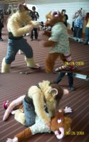 Fists of Furry by Rennon-the-Shaved