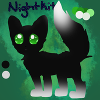 Nightkit, the Dream Kitten by SoftcloudRC