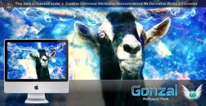 Gonzal Wallpaper Pack by 878952