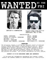 Terminator Wanted Poster v2.0 by codebreaker2001