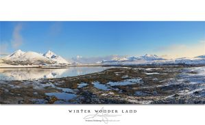 Winter Wonder Land by Stridsberg