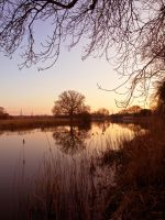 River Ouse Late Afternoon by davepphotographer