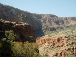 Ormiston Gorge [(2) Further out] by BradleyPitt