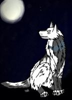 Prize: A light in the night sky by Crystal-WolfDarkness
