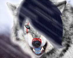 Wolfie is trying to be realistic by WolfieTan