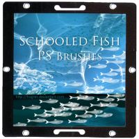 Schooled Fish - PS Brush by hogret