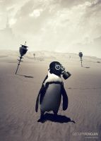 Occupy Penguin by sedatgever