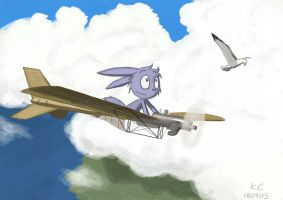 Flying with the seagull by kerol