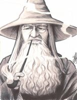 Gandalf by artistjerrybennett