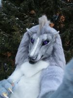 Simarkon fursuit, old version mask by SnowVolkolak