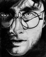 Harry Potter by joanap