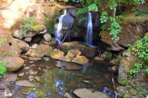Whatcom Falls Park-05SEP2015-095 by SkyfireDragon