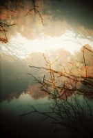 Autumn,in Holga by madder-cat
