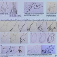 Sketch Tutorial pg3 by TigerHawkmon