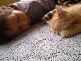 cat nap by lagaby